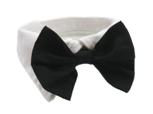 BLACK SATIN DOG BOW TIE AND COLLAR, ACCESSORIES - Bones Bizzness