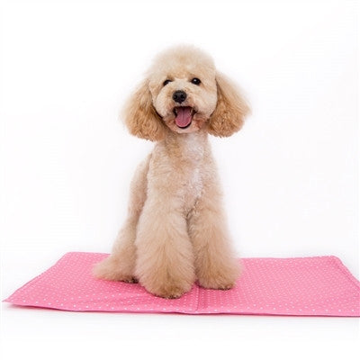 ICOOL GEL DOG MAT PINK, Shirts Tanks & Tees - Bones Bizzness