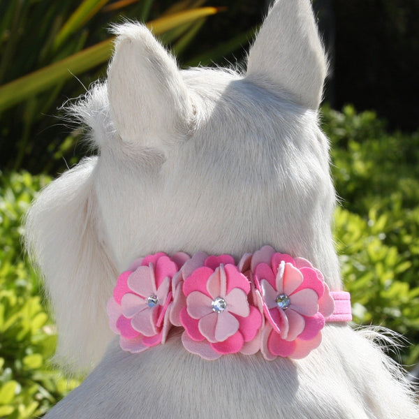 "ALEXANDRA DOG COLLAR BY SUSAN LANCI 1/2"", Collars - Bones Bizzness"