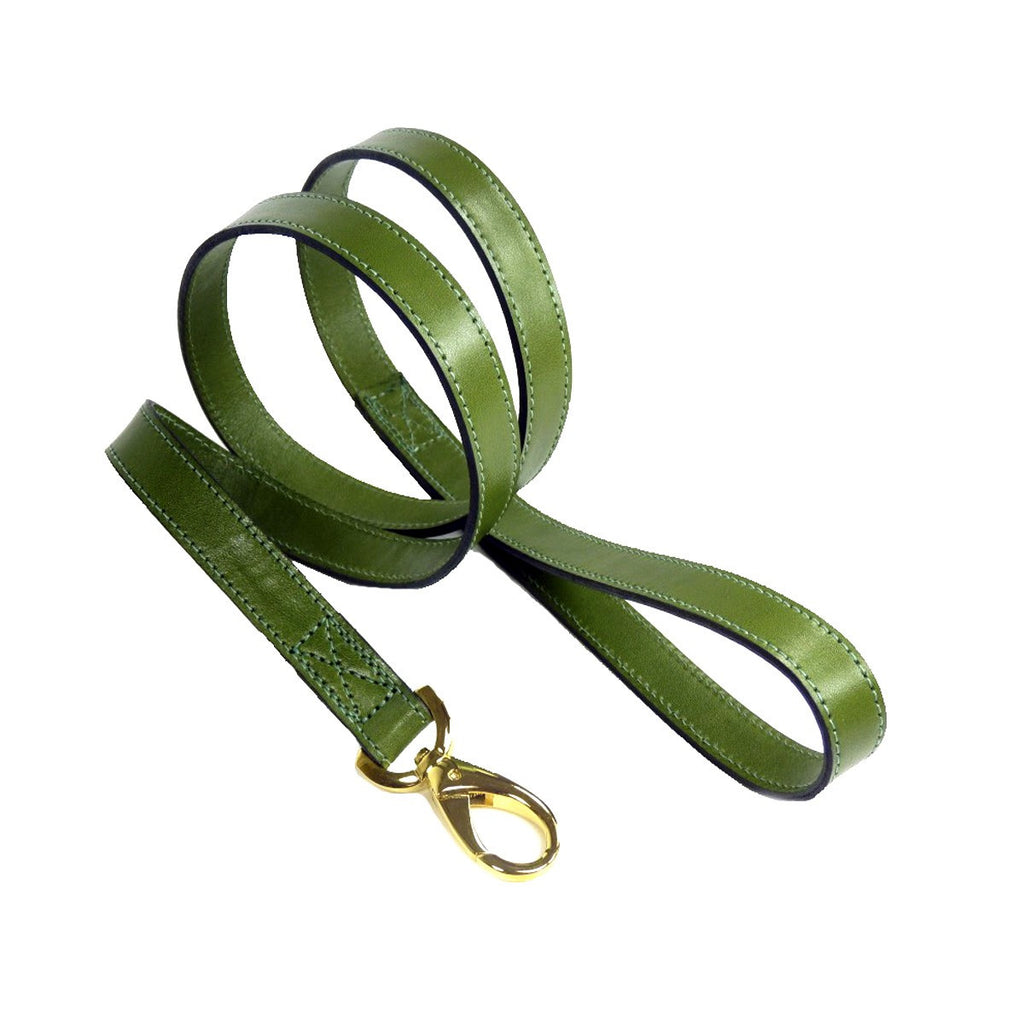 DAISY DOG LEAD IN LIME GREEN, Leash - Bones Bizzness