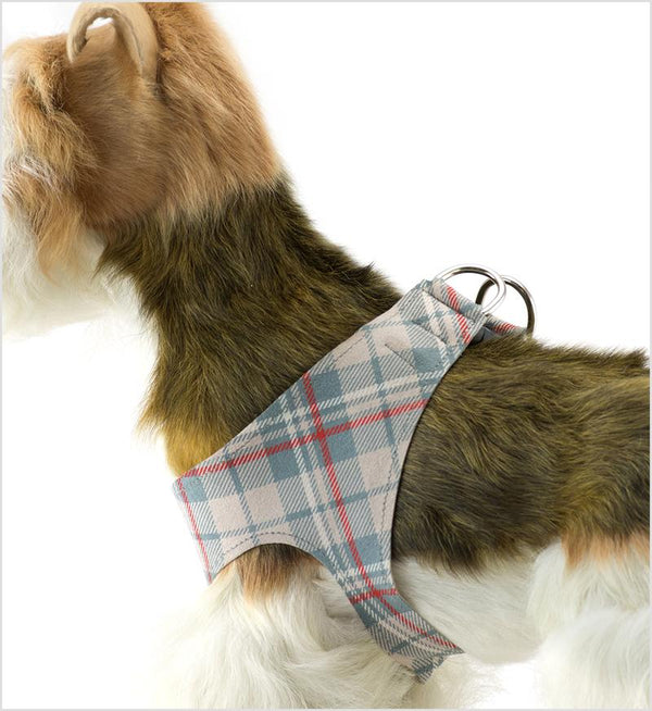 DOE SCOTTY PLAID PLAIN STEP-IN HARNESS, Harness - Bones Bizzness