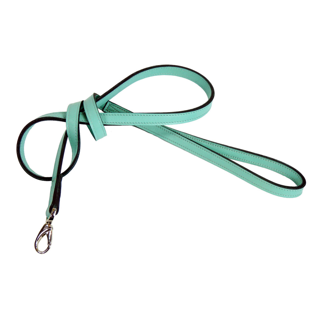 GEORGIA ROSE DOG LEAD IN TURQUOISE & NICKEL, Leash - Bones Bizzness