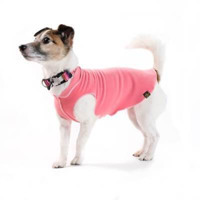 GOLD PAW STRETCH CORAL DOG FLEECE