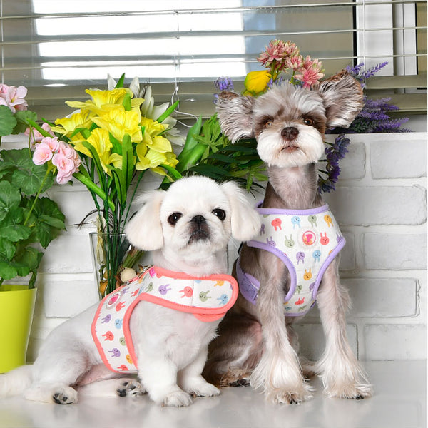 HOPPER PUPPIA DOG HARNESS - (2 COLORS)