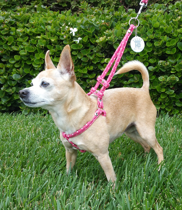 POLKA DOT STEP-IN DOG HARNESS - PINK