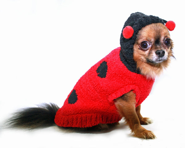 CHENILLE LADY BUG DOG SWEATER, Sweaters - Bones Bizzness