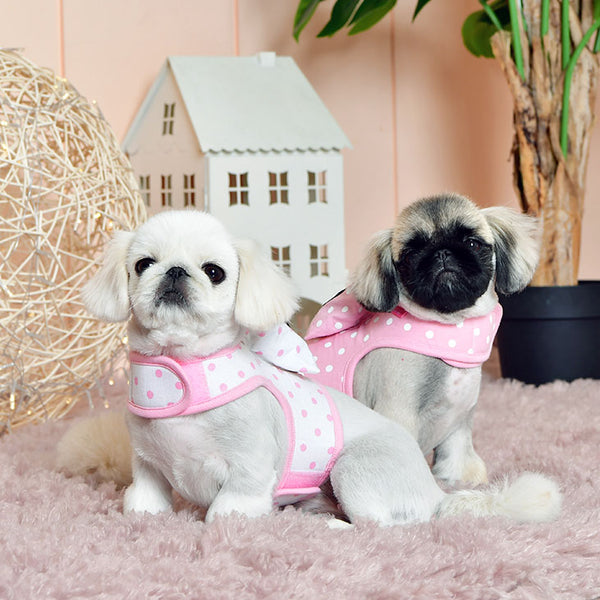 LANA PINKA HARNESS - PINK / OFF WHITE & PINK (2 COLORS)
