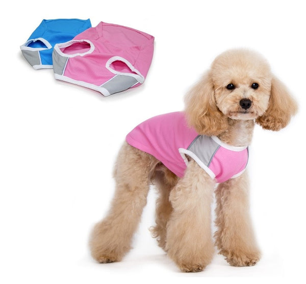 ICOOL DOG TANK - PINK, Shirts Tanks & Tees - Bones Bizzness
