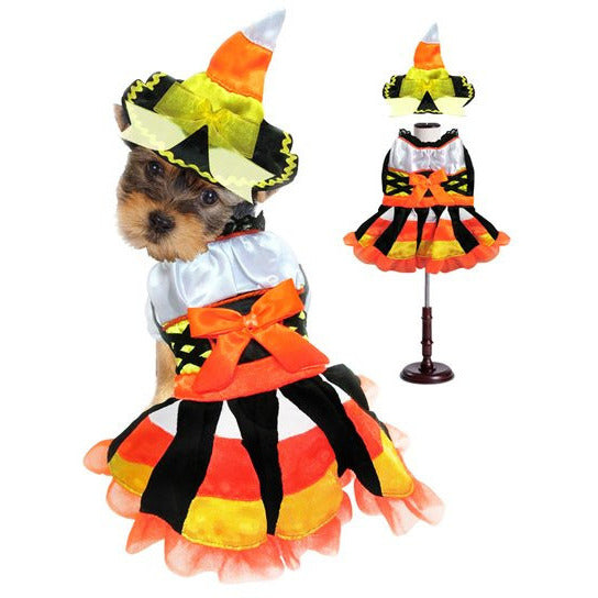 CANDY CORN WITCH DOG COSTUME, Costume - Bones Bizzness