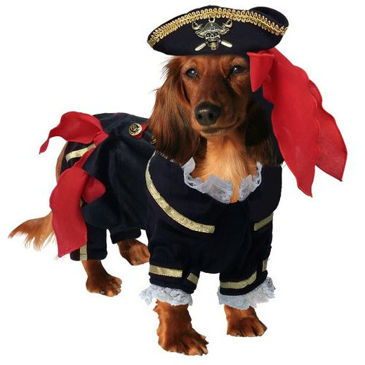 BUCCANEER PIRATE DOG COSTUME, Costume - Bones Bizzness