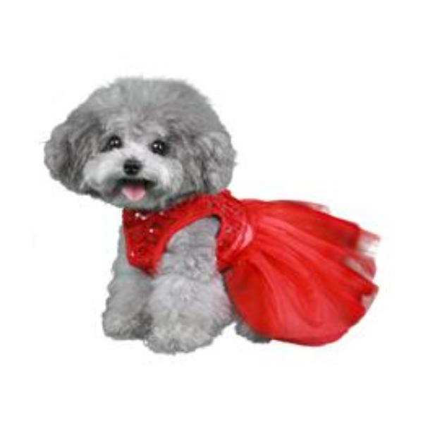CASANDRA DOG DRESS, DRESS - Bones Bizzness