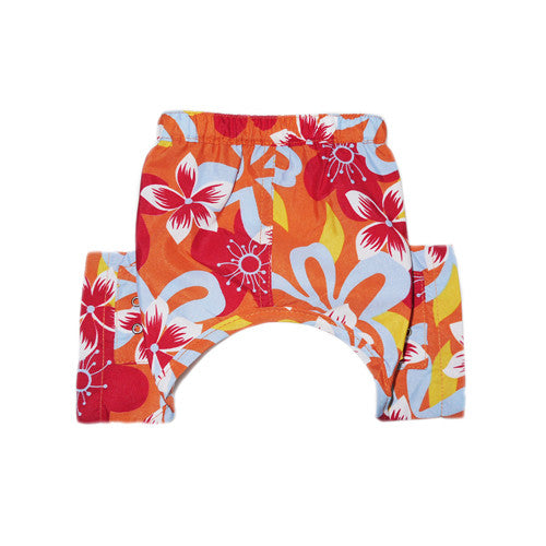 TASMANIA DOG SWIM TRUNKS, Swim Shop - Bones Bizzness