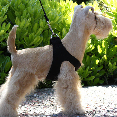 PLAIN ULTRASUEDE STEP-IN DOG HARNESS- (53 COLORS)