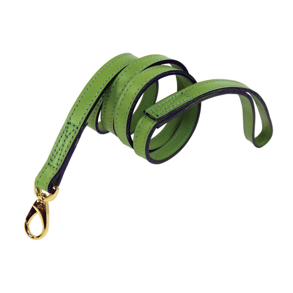 SOUTH SEAS LEAD IN LIME GREEN & GOLD, Leash - Bones Bizzness