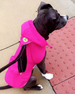 HOT PINK CRAB PACKAWAY DOG RAINCOAT, Coats - Bones Bizzness
