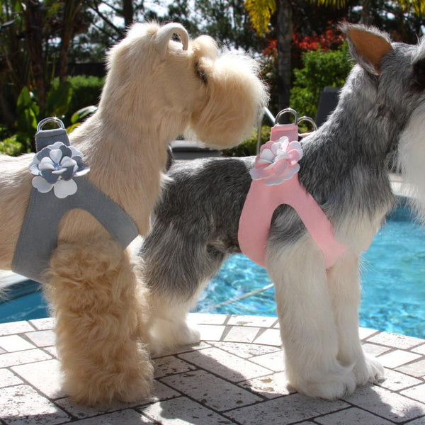 SPECIAL OCCASION DOG HARNESS - PLATINUM OR PUPPY PINK, Harness - Bones Bizzness