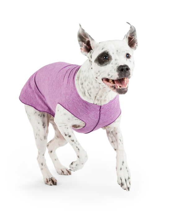 VIOLET HEATHER SUN SHIELD DOG TEE, Sweaters - Bones Bizzness
