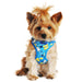 WRAP AND SNAP CHOKE FREE DOG HARNESS - HAWAII BLUE, Harness - Bones Bizzness