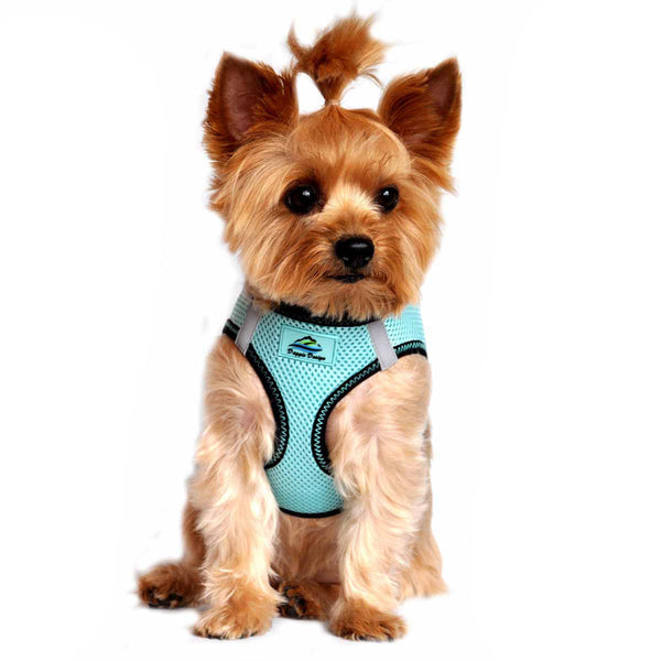 AMERICAN RIVER CHOKE FREE DOG HARNESS TOP STITCH COLLECTION - ARUBA BLUE, Harness - Bones Bizzness