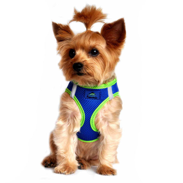 AMERICAN RIVER CHOKE FREE DOG HARNESS TOP STITCH COLLECTION - BLUE & GREEN TRIM, Harness - Bones Bizzness