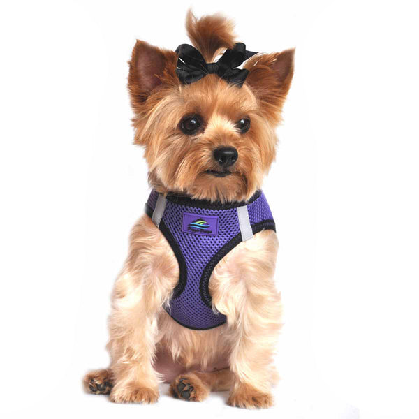 AMERICAN RIVER CHOKE FREE DOG HARNESS TOP STITCH COLLECTION - ULTRA VIOLET, Harness - Bones Bizzness