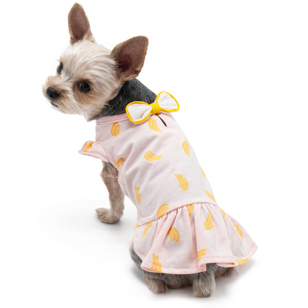 BANANA DOG DRESS