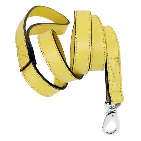 BARCLAY IN CANARY DOG LEAD