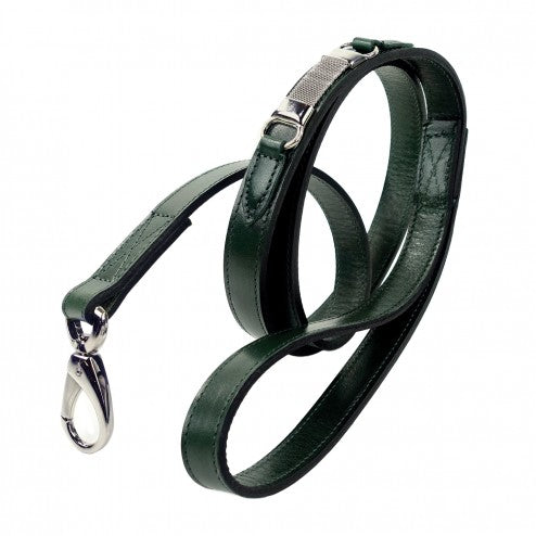 BARCLAY IN IVY GREEN DOG LEAD