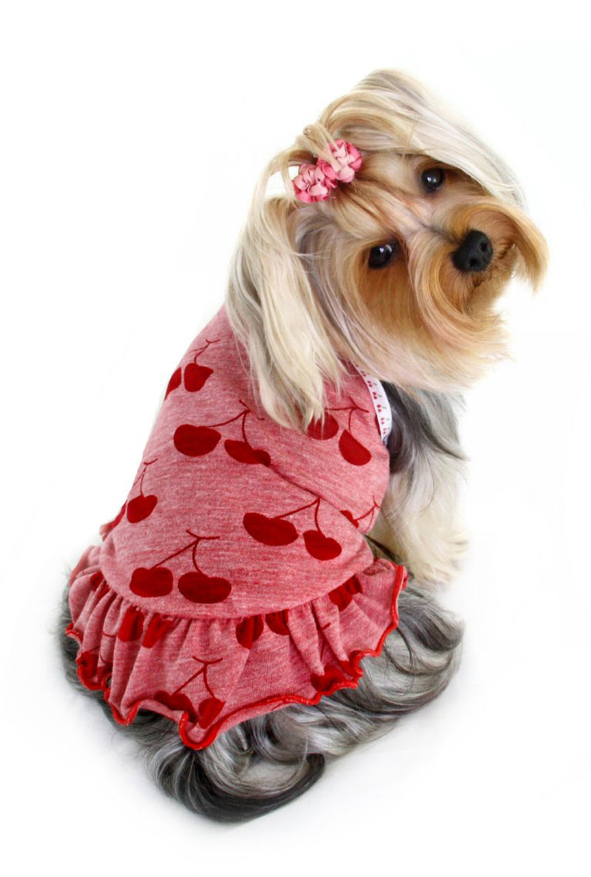 HIP DOGGIE RED CHERRY DOG DRESS