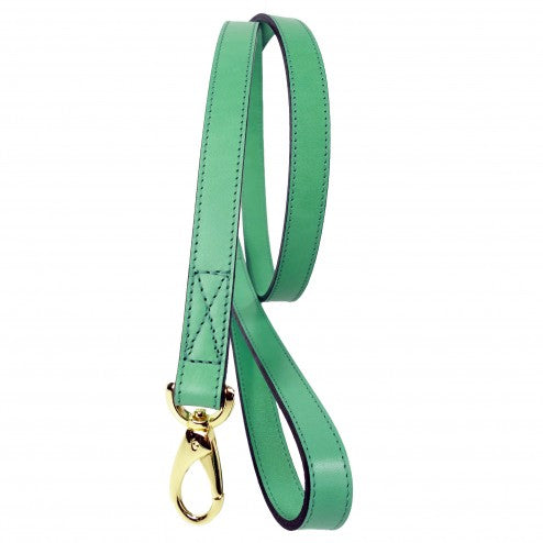 CENTRAL PARK IN KELLY GREEN DOG LEAD