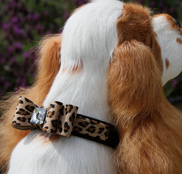 CHEETAH COUTURE BIG BOW TWO-TONE DOG COLLAR, Collars - Bones Bizzness