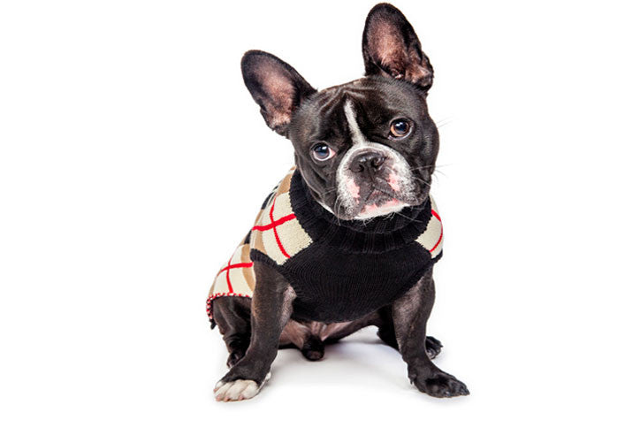 ENGLISH RED/TAN/BLACK/WHITE PLAID DOG SWEATER, Sweaters - Bones Bizzness