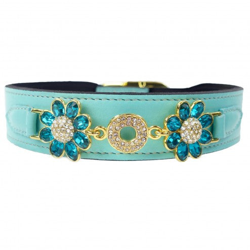 DAISY IN TURQUOISE & GOLD DOG COLLARS, Collars - Bones Bizzness