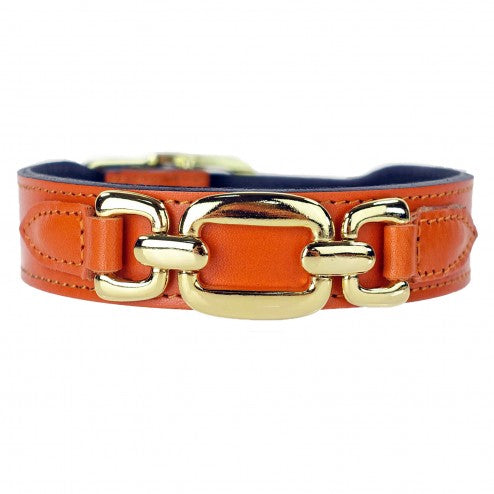 GOOD AS GOLD IN TANGERINE DOG COLLAR