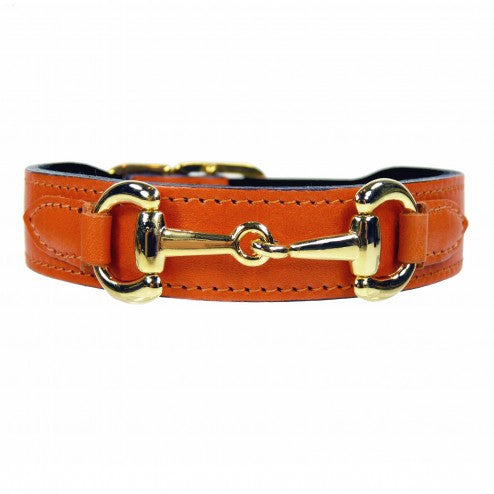 BELMONT IN TANGERINE & GOLD DOG COLLAR, Collars - Bones Bizzness