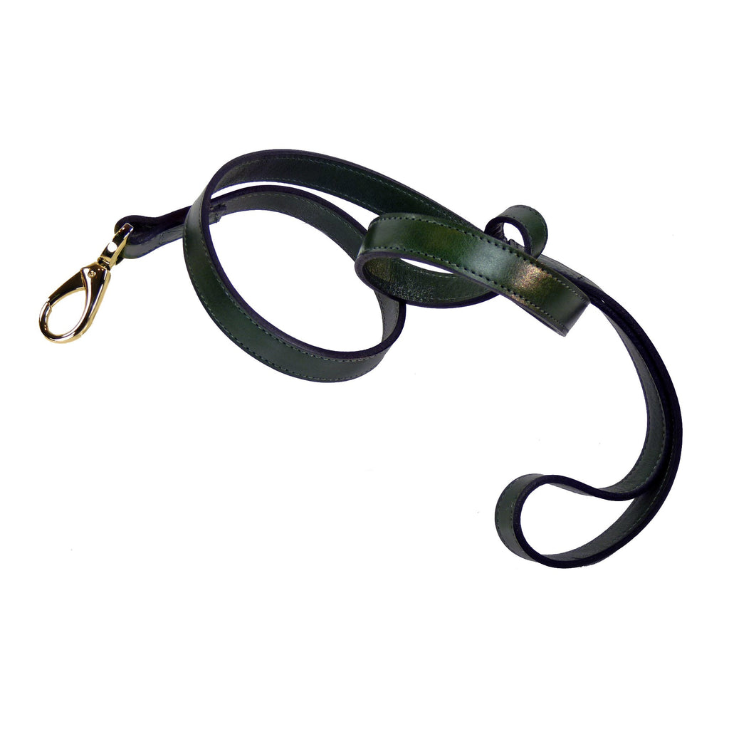 HAMILTON COLLECTION DOG LEAD IN IVY GREEN & GOLD, Leash - Bones Bizzness