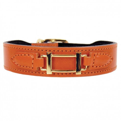 HAMILTON COLLECTION IN TANGERINE & GOLD DOG COLLAR, Collars - Bones Bizzness
