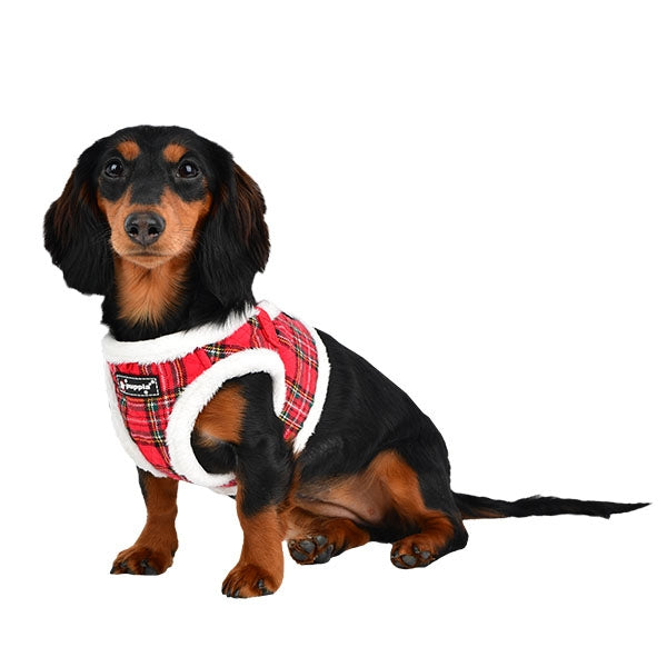 BLITZEN PUPPIA DOG HARNESS B - CHECKERED RED, Harness - Bones Bizzness