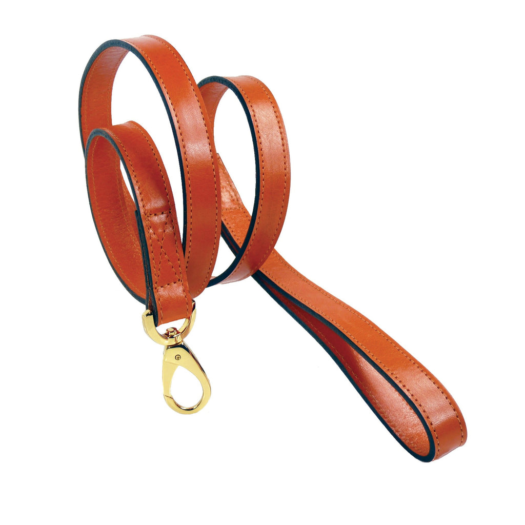 GEORGIA ROSE DOG LEAD IN TANGERINE & GOLD, Leash - Bones Bizzness