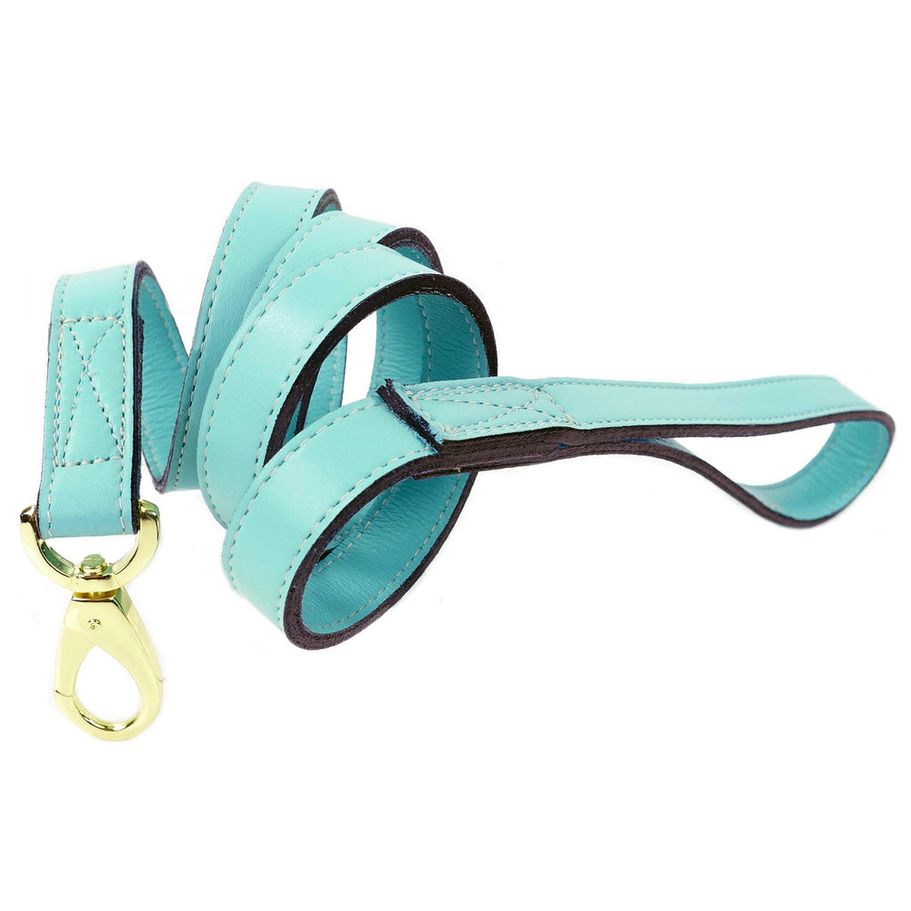 DAISY DOG LEAD IN TURQUOISE & GOLD, Leash - Bones Bizzness