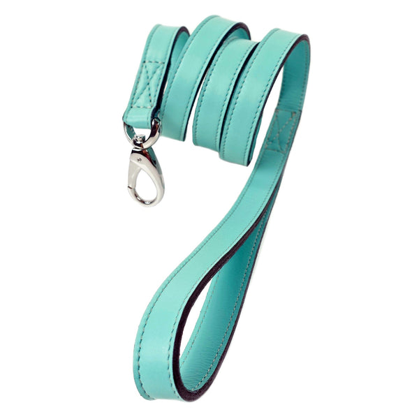 ATHENA TURQUOISE & NICKEL DOG LEAD, Leash - Bones Bizzness