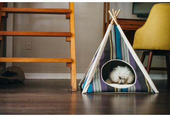 HORIZON PET TEEPEE - LAKE
