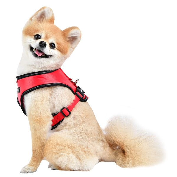 PUPPIA LEGACY SNUGFIT HARNESS E - RED, Harness - Bones Bizzness