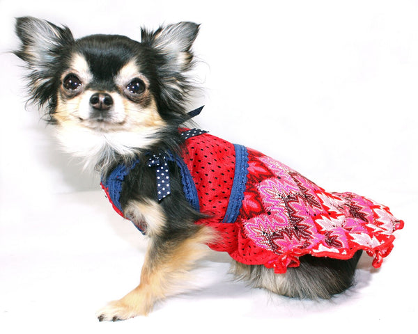 MUTTSONI LACE DOG DRESS