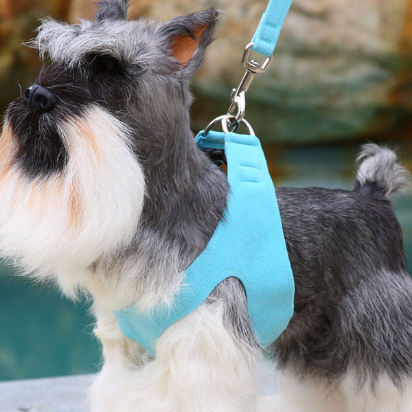 TIFFI BLUE PLAIN ULTRASUEDE STEP-IN DOG HARNESS - (42 COLORS), Harness - Bones Bizzness