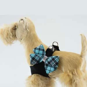 SCOTTY BLACK STEP-IN HARNESS W/TIFFI BLUE PLAID NOUVEAU BOW