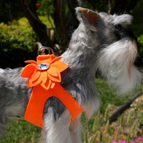 WATER LILY CRYSTAL STEP-IN DOG HARNESS- ELECTRIC ORANGE, Harness - Bones Bizzness