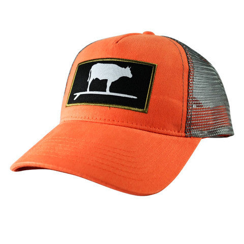 Surf And Turf Trucker