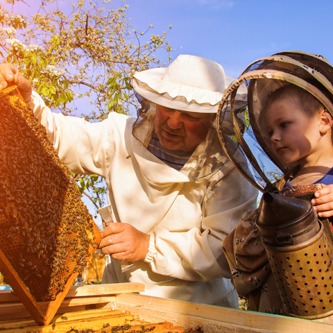Beekeeper and child