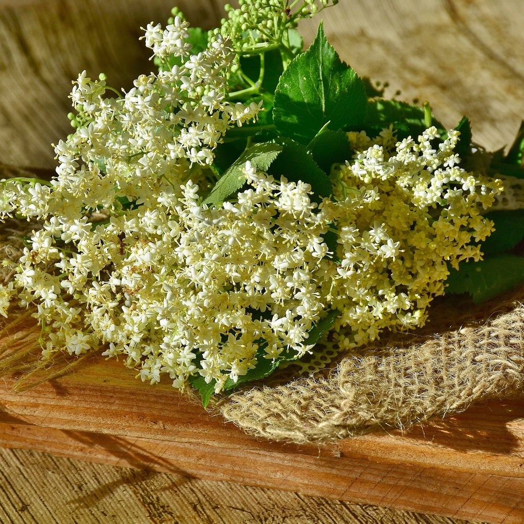 Elderflower Infused Acacia Honey